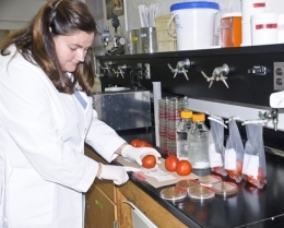 Michelle Danyluk - Michelle Danyluk, Ph.D.