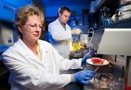 Elaine Berry - Elaine Berry, Ph.D.