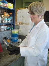 Lynne McLandsborough - Lynne McLandsborough Ph.D.